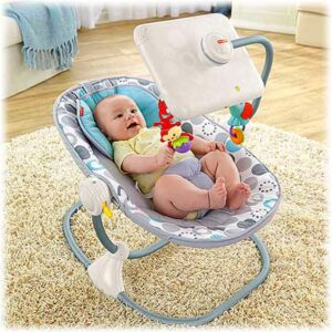 Newborn-to-Toddler Apptivity™ Seat for iPad® Device by Fisher-Price
