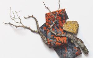 lichen-courtesy-mohawk-group