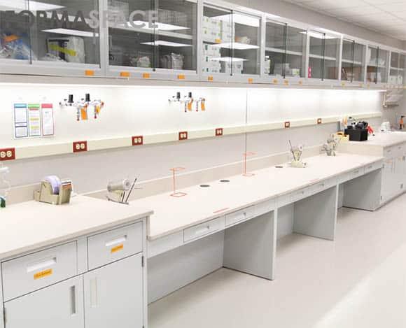 food diagnostics lab