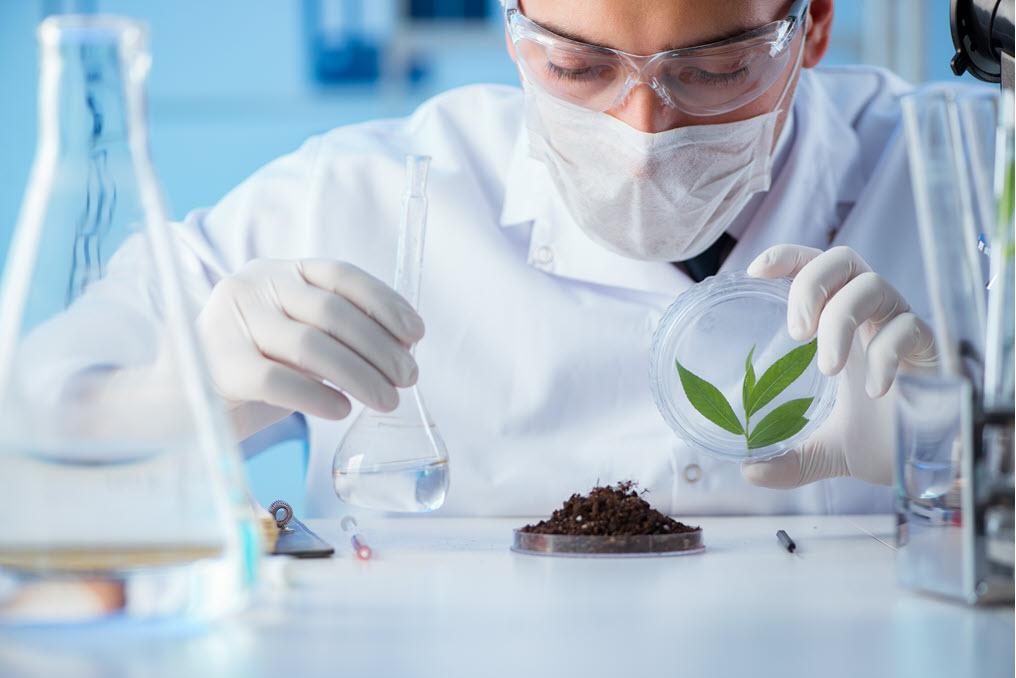 soil testing labs