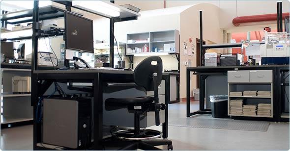 lab-data-entry