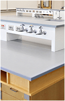 wet lab fume hood reagent shelf with gas water and air utilities