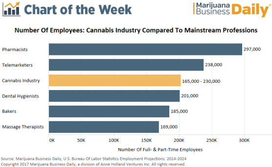 Number of employees in cannabis industry