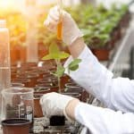 healthy soil laboratory agriculture
